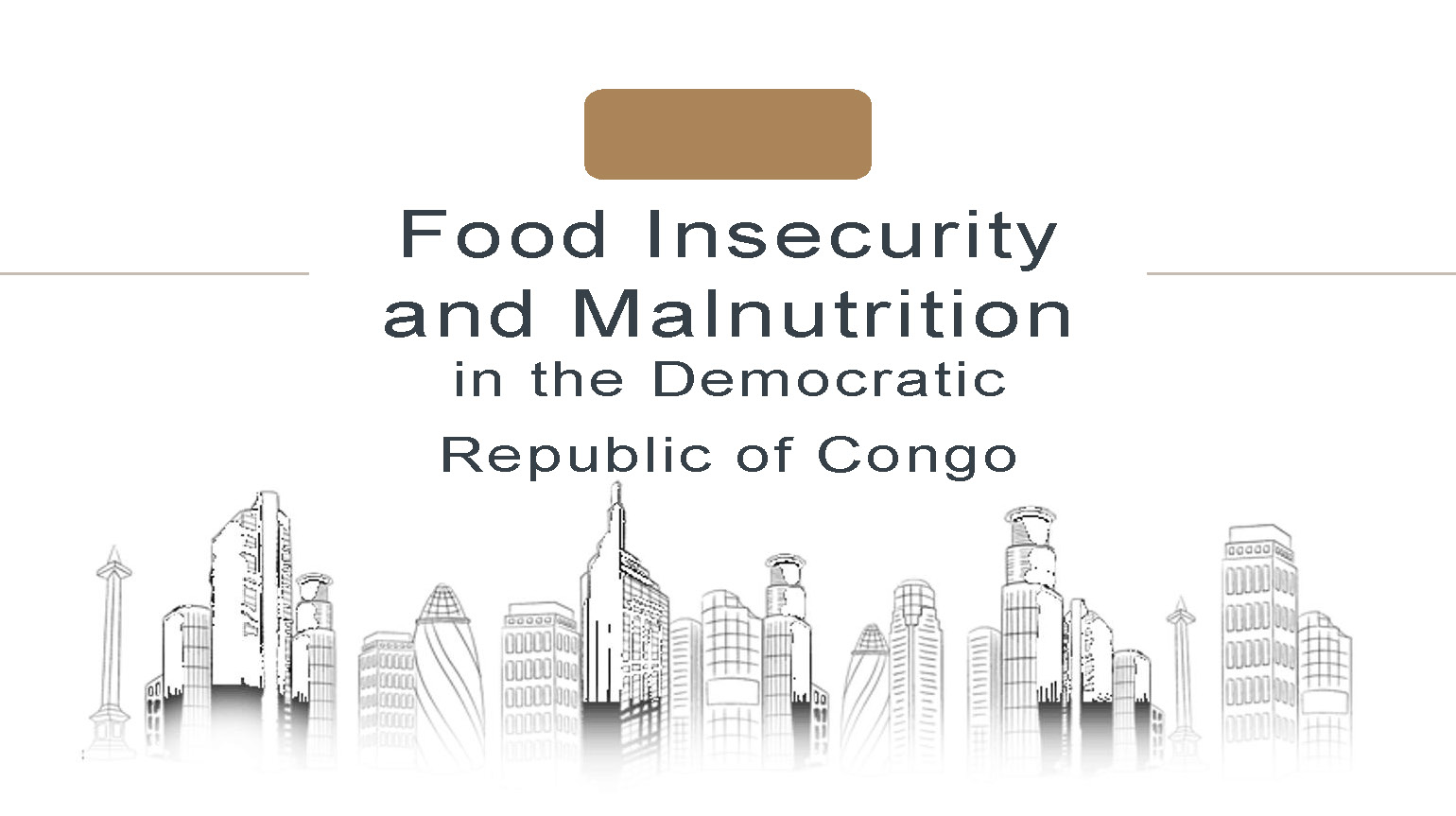 Student Project PGH Food Insecurity and Malnutrition in Congo